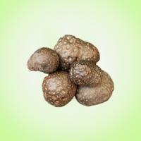 Sarun-kand-(Dioscorea-bulbifera)